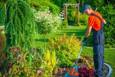 Bahçe, Botanik ve Peyzaj Düzenleme